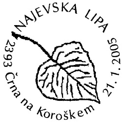 21_01_2005 - Najevska lipa